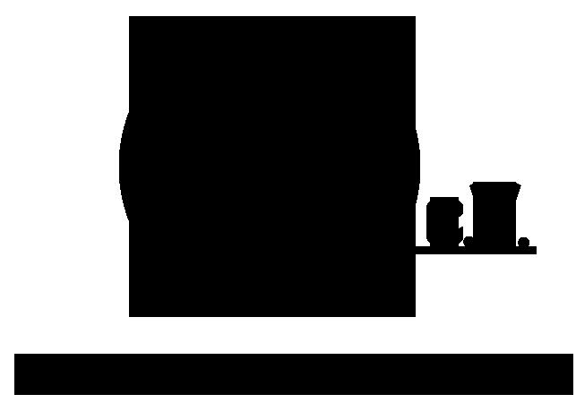 bsp.e.V